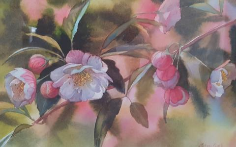 Watercolour Crabapple Blossom by Svetlana Orinko at Windsor Gallery