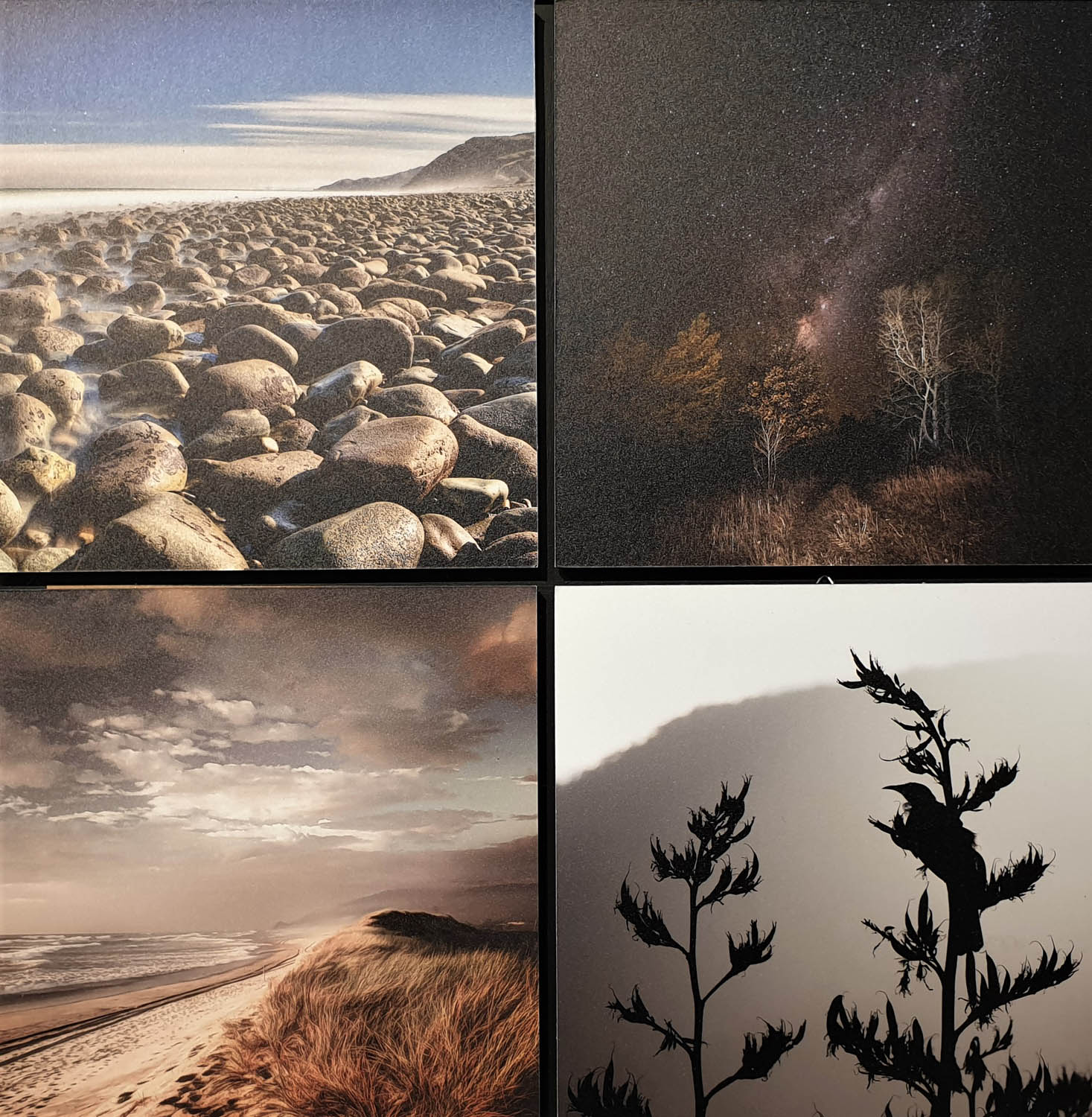 Exhibition of Fine Art  Photography by Sam Barrow at Windsor Gallery - Little Treasures